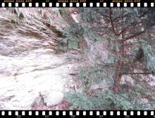 leukofillit Sopron Vas-hegy